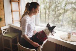 Tierkommunikation Buch – Expertenwissen rund um Ihr Tier