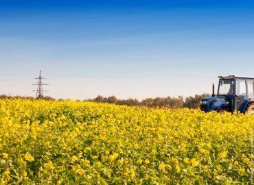 Traktoren – Die schönsten Modelle seit den 1920er Jahren – Das Ebook